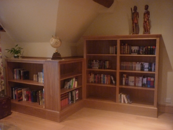 Bookcase-Made-to-Fit